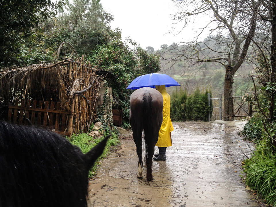 Der grosse Regen – Patric&Major